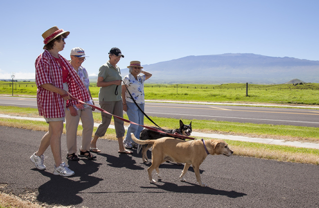 Walking groups combine physical and social activities. (COURTESY PHOTO)