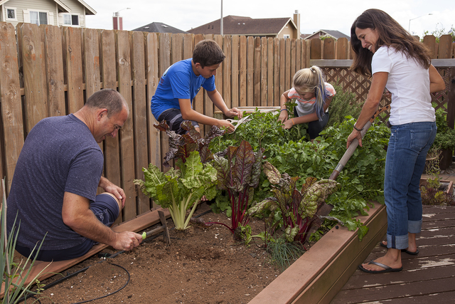 Planting a family garden is one way to bond and provides healthier food options at home. (COURTESY PHOTO)