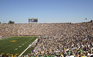 Football Stadium in Michigan